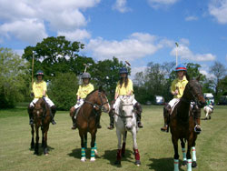 Woolmers Park Junior Polo team